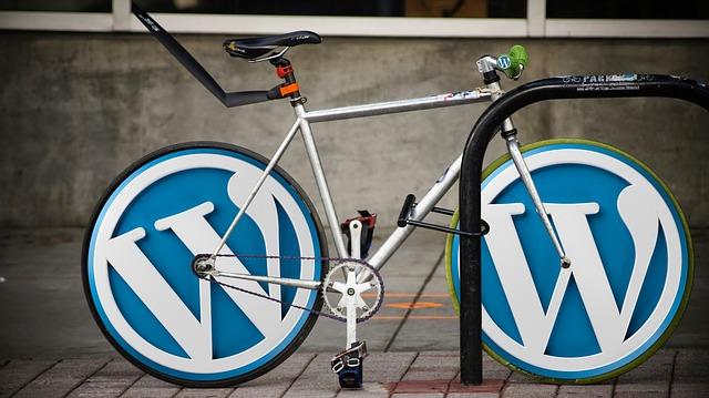 WordPressをインストールしたらテーマ選び!無料で人気のCocoonが最適